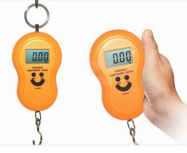 Pepperfry Offer : Phyzo 40 Kg Weighing Scale Digital Set Of 2 @ Rs 235