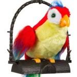 PayTM : Saffire Talking Parrot