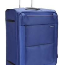 Samsonite Basal Check-in Luggage - 22