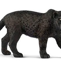 Scheich Black Panther, Multi Color